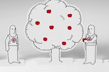 영상: ICRC의 인도주의적 행동