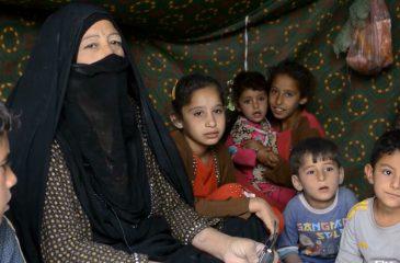 이라크: 수만 명, 포위된 도시 팔루자 탈출