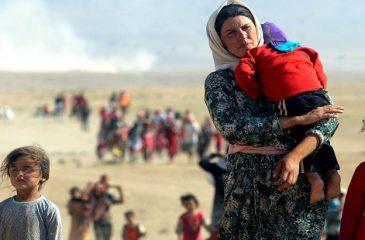"""피터 마우러 ICRC 총재 : """"이라크와 시리아에 재관심 필요"""""""