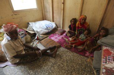 예멘: 평화의 전망, 호데이다 전투의 인도적 위반 사항에 이유 안돼
