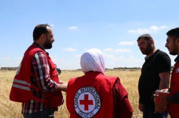 ICRC의 활동 운영