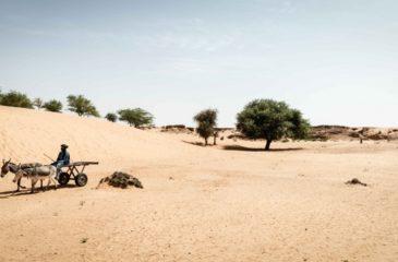 말리: 보이지 않는 최전선, 분쟁 지역의 기후 변화